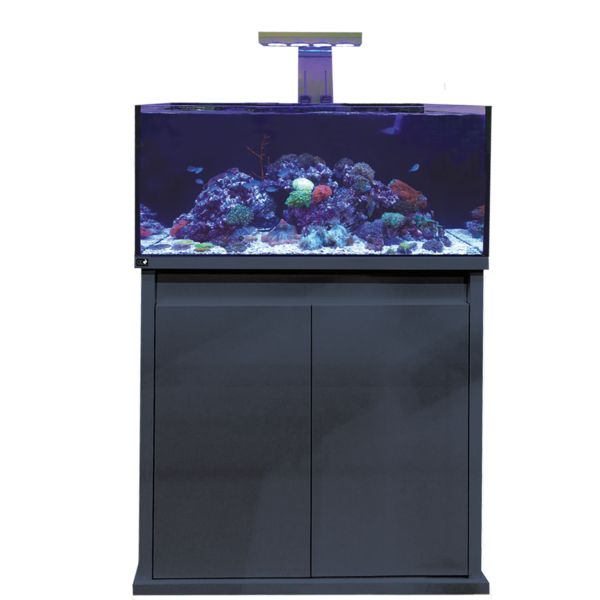 D-D Reef-Pro 900 Anthracite